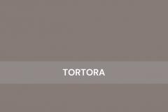 Tortora-HighGloss