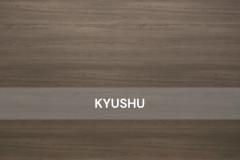 Kyushu-Wood
