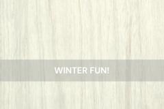 WinterFun-WoodTexture