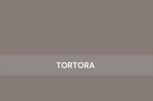 Tortora-Salt Colored Cabinets